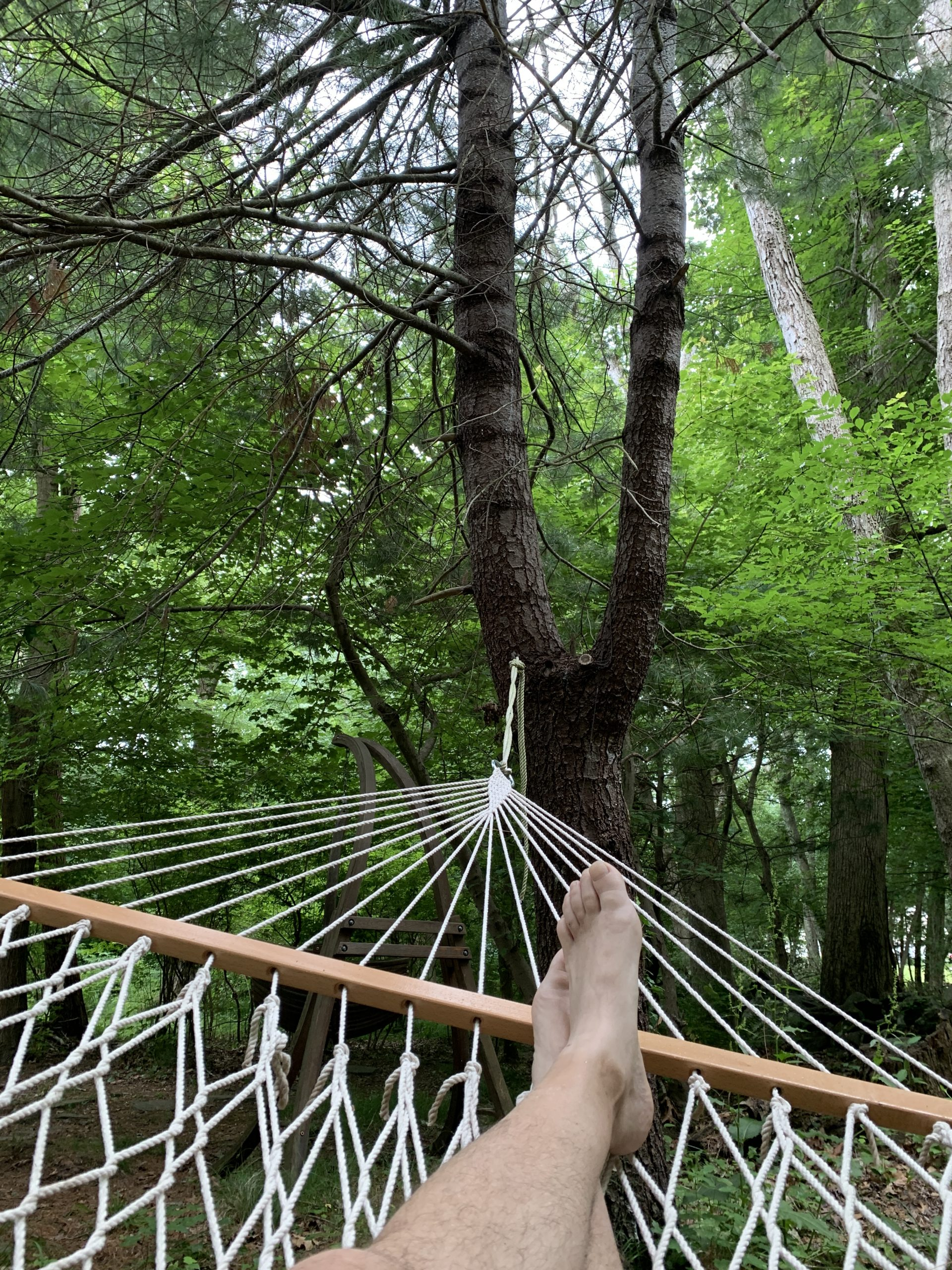 Hangin' in the Hammock