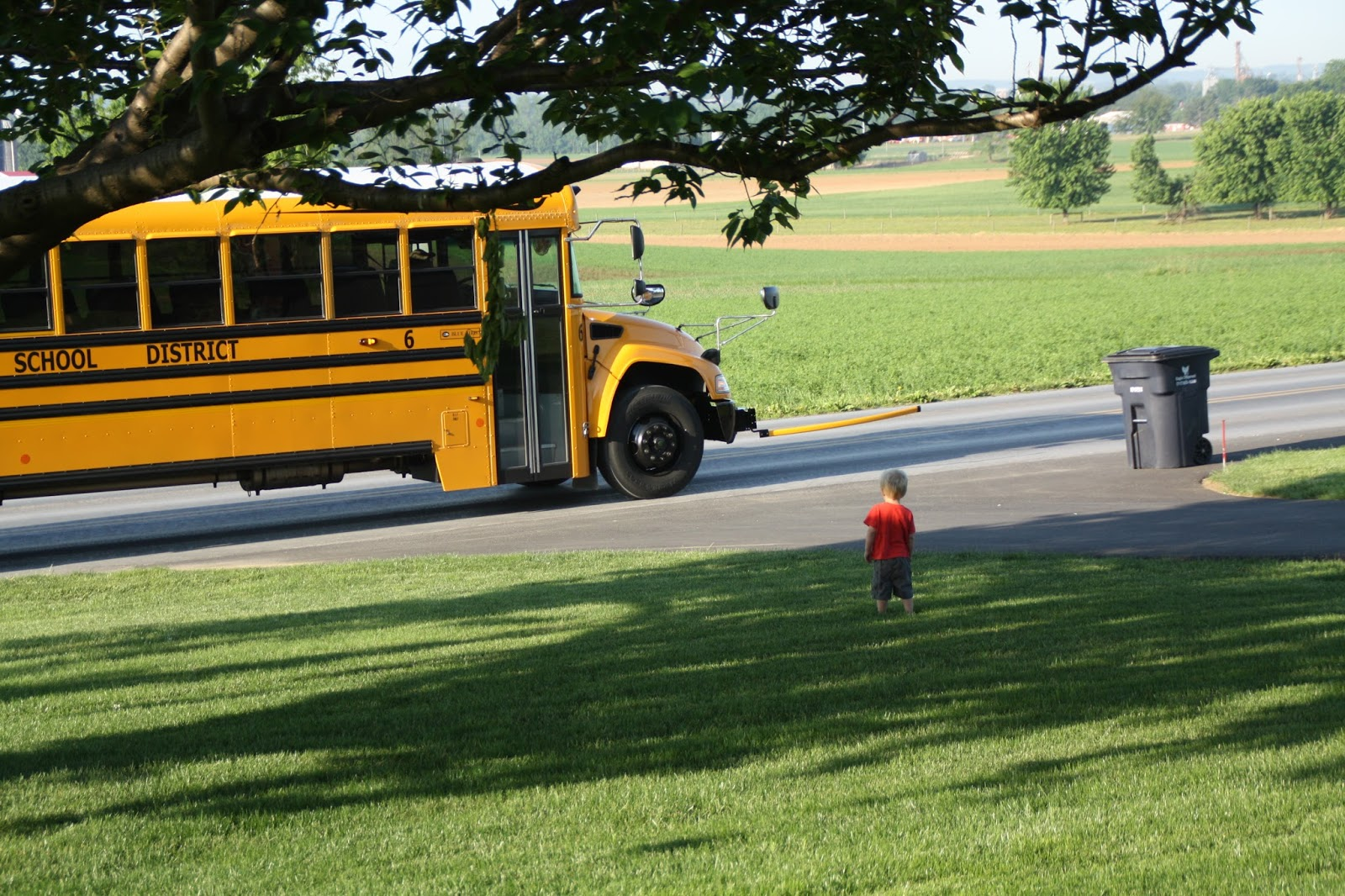 Read more about the article Back to School…Sort of….